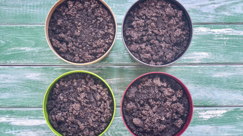 Four pots of soil on a blue background.