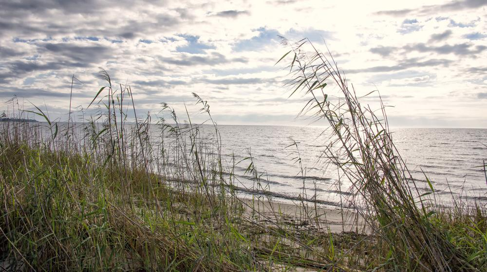 Dunes with grass appear in the foreground with the sun shining on the blue waters of the Mississippi Sound at Graveline Bayou in Jackson County.