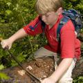 Peter Drackett, 11, of Long Beach scrapes the bark of a dead tree at the Noxubee Wildlife Refuge to find pine bark beetles. (Photo by Kat Lawrence)