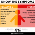 Graphic with symptoms of heat exhaustion and heat stroke.