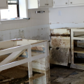 A kitchen with white walls and cabinets shows severe flood damage, including mold damage, on floors and cabinets with doors and drawers removed.