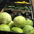 Light green lettuce, dark purple eggplant and cucumbers sit on black shelves.
