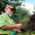 """""""Detective Bachman"""" examines a struggling plant to figure out how to fix a problem it faced in the landscape. (Photo by MSU Extension Service)"""
