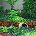 A tall urn holds a tree fern surrounded by Dragon Wing Red begonias and Marguerite sweet potatoes. Electric Lime coleus, SunPatiens Vigorous Red impatiens, Gold Mound duranta and Goldilocks lysimachia are layered in the bed around it, and Super Dwarf Cavendish bananas flank the planting.