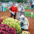 Gardeners of all skills flock to the Fall Flower and Garden Festival in Crystal Springs to examine the displays and collect new ideas. These ladies visited a previous festival and took notes on a vigorous sun coleus display. (Photo by Bob Ratliff)