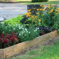 Treated lumber, such as 2-by-6-inch boards, makes constructing raised beds quick and easy. (Photo by MSU Ag Communications/Gary Bachman)