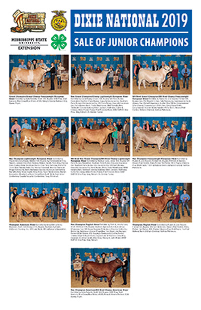 Winners of the Dixie National  Sale of Champion Steers