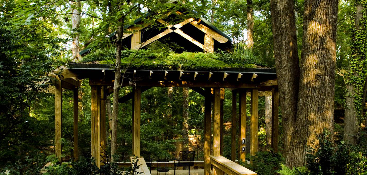 This is an image of another greenroof.