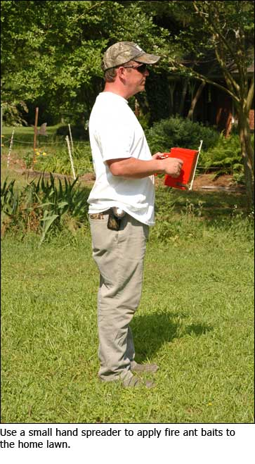 A man using a small hand spreader to apply fire ant baits to a home lawn.