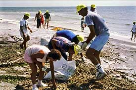 volunteers cleaning up the coast.