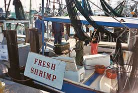 Shrimp boat with fresh shrimp sign.